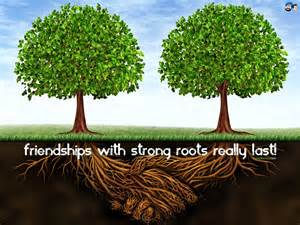 Friendship roots